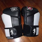 Hayabusa Tokushu Boxing Gloves Review