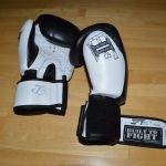 Built to Fight Boxing Gloves Review