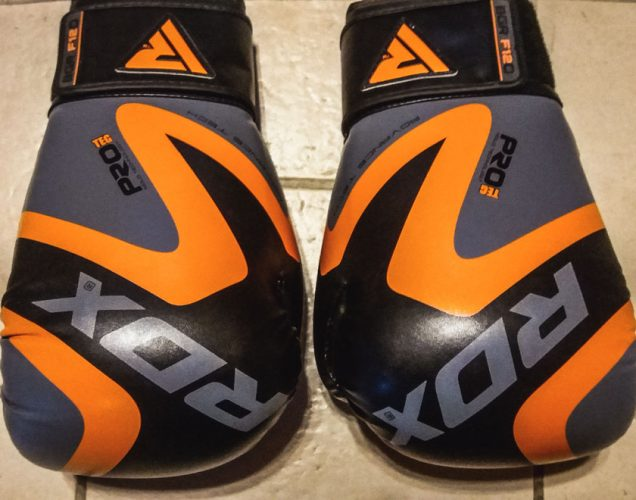 Rdx Training Gloves Review