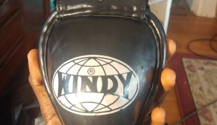 Windy Muay Thai Steel Cup Review