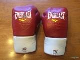 Everlast MX Boxing Gloves