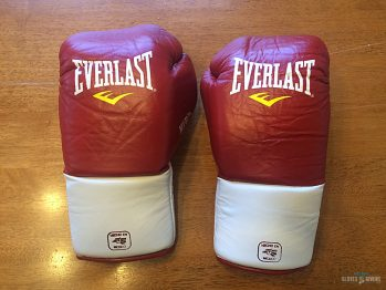Everlast MX Boxing Gloves Review