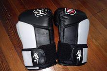 Hayabusa Tokushu Boxing Gloves