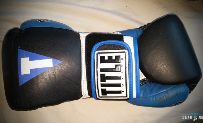 a95c740bd3df5 Title Gel World V2T Bag Gloves Review - MMA Gear Addict