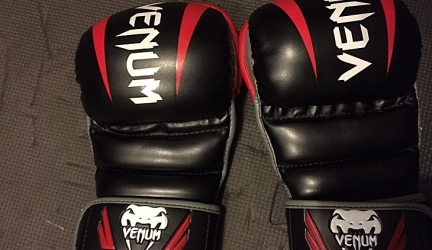 Venum Elite MMA Sparring Gloves Review