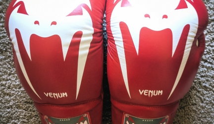 Venum Giant 3.0 Lace Up Leather Gloves