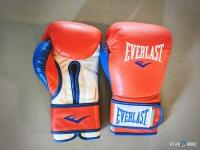 Everlast Powerlock Synthetic Boxing Gloves